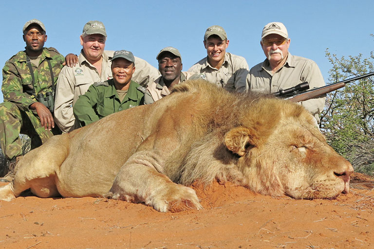 Big Game Hunting (Lion) in Africa