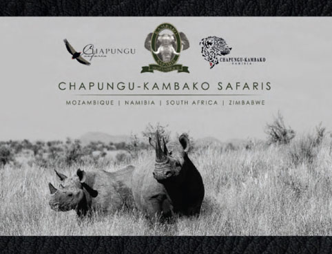 Download Chapungu-Kambako Safari's Hunting Brochure