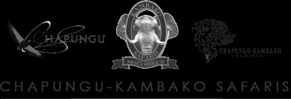 Chapungu-Kambako Safaris Logo