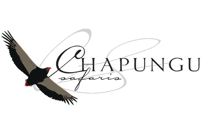 Chapungu Safaris Logo