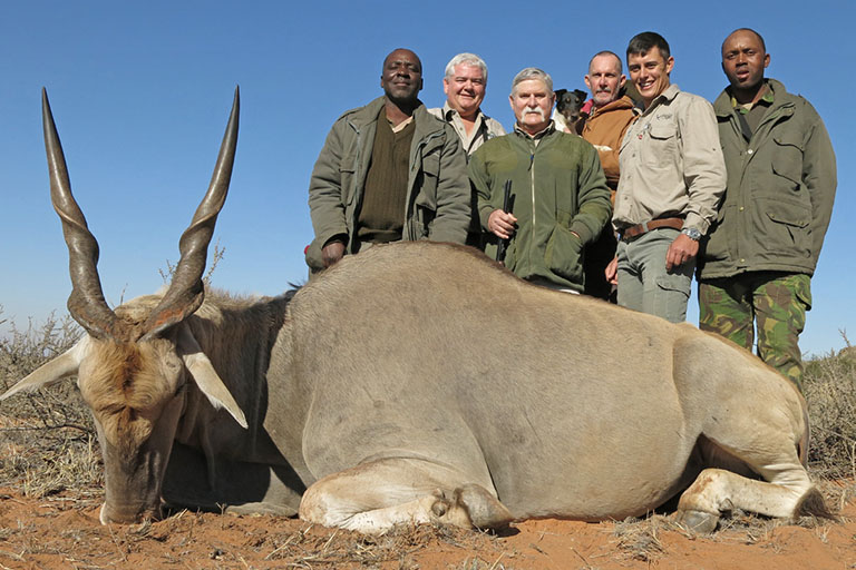 Plains Game Hunting (Eland) in Africa
